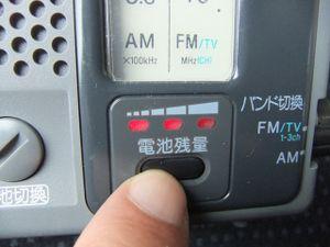 Icfb1004